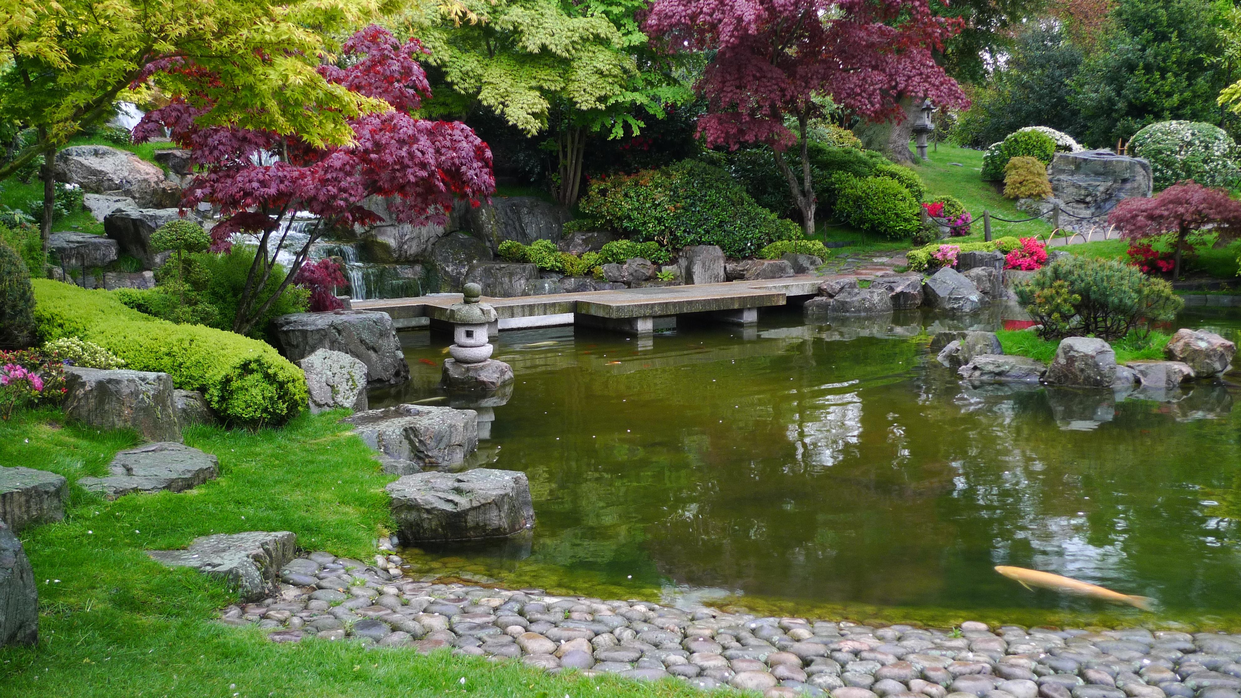 Garden Pond Ideas The Kyoto Garden 171 海外の日本庭園